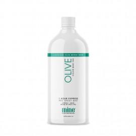 MIN Olive Pro Mist Bag 1L